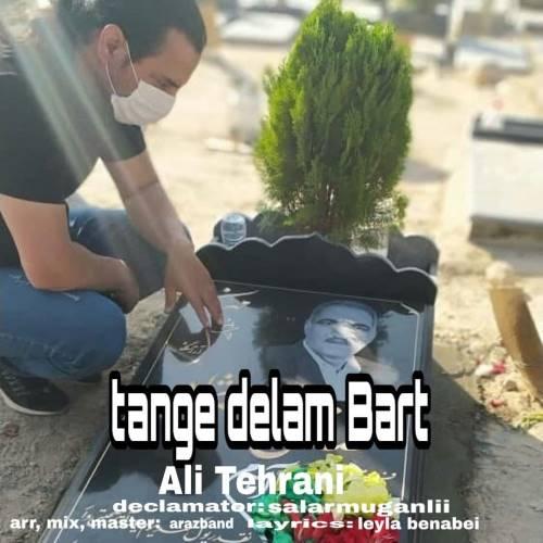 دانلود آهنگ جدید علی تهرانی به نام تنگ دلم برات