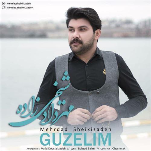 دانلود آهنگ جدید مهرداد شیخی زاده به نام گوزلیم