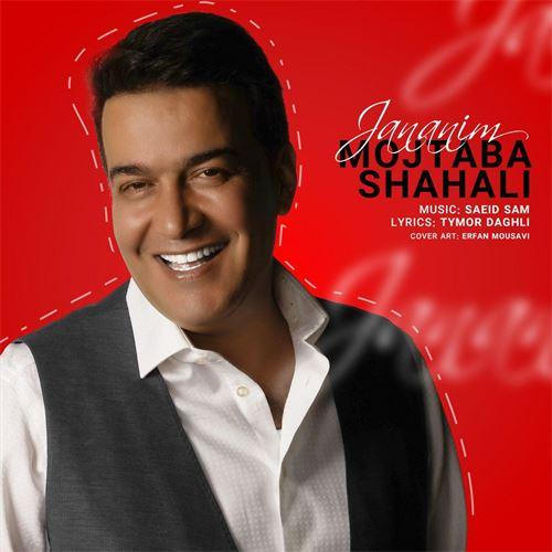 دانلود آهنگ جدید مجتبی شاه علی به نام جانانیم