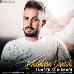دانلود آهنگ جدید ناصر شاهماری به نام عشقیدن دانیش