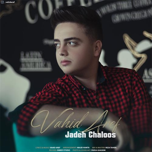 دانلود آهنگ جدید وحید عارف به نام جاده چالوس