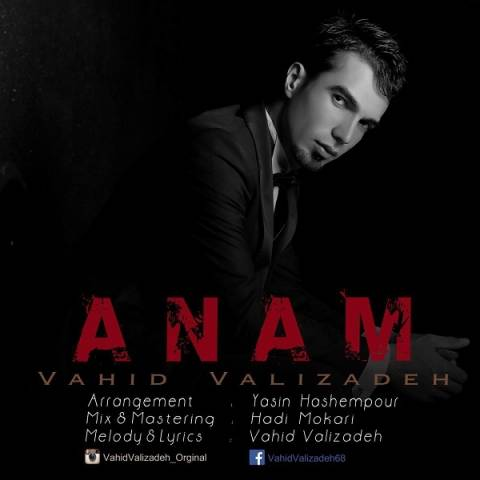 Vahid Valizadeh - Anam