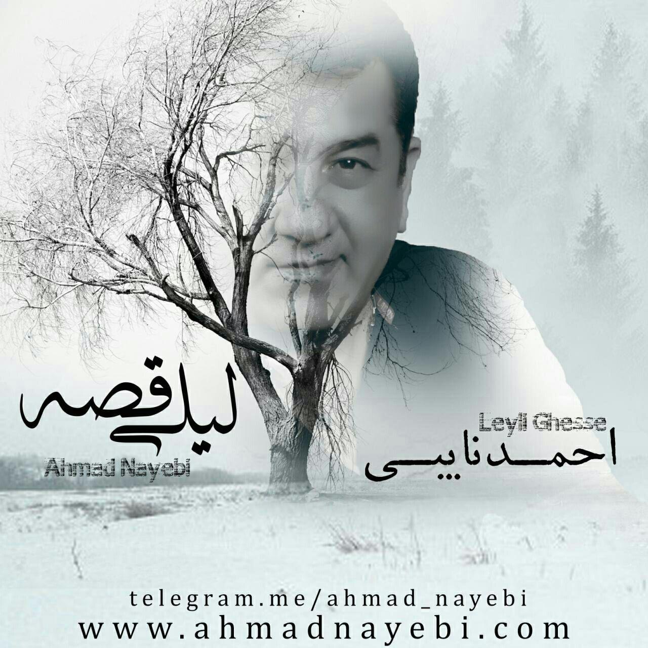دانلود آهنگ جدید احمد نایبی به نام لیلی قصه